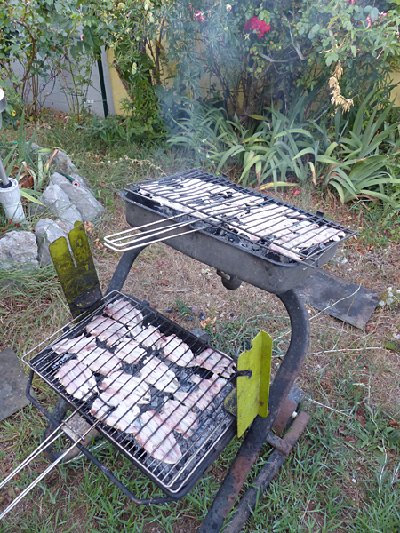 sardines à Grasse