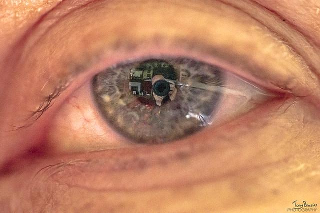 eye eye