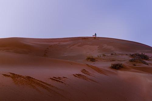Dunes (1 of 1)