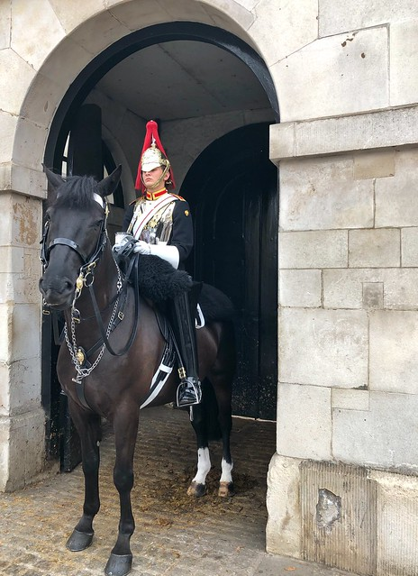 Household Cavalry | Street Photography London