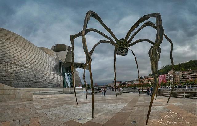 Araña Museo Guggenheim