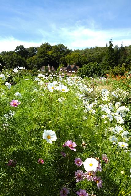 Chartwell (Kitchen Garden).