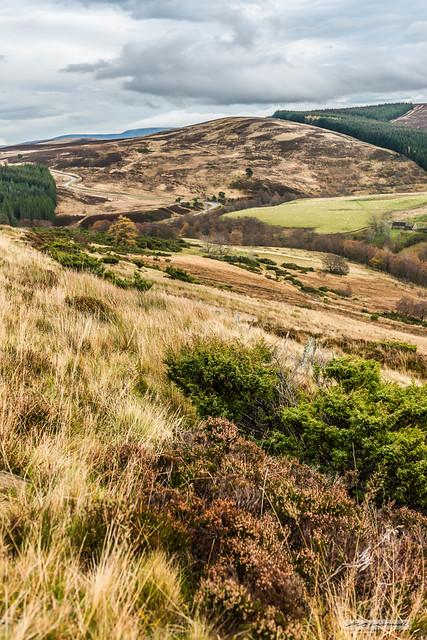 Splendid ecology of Scotland near Corgarff Castle and Strathavon.