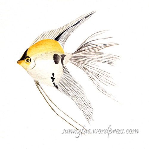 gold marble veiltail angelfish watercolour painting