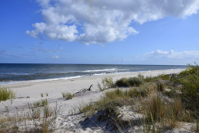 Baltic sea. Empty September beach