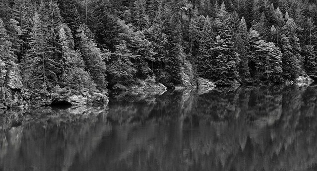 Reflections of Turquoise Green Waters (Black & White, North Cascades National Park Service Complex)