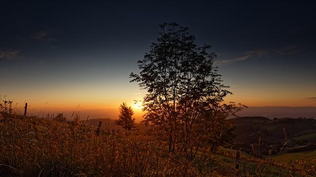 Autumn sunset at Feldberg in the Black Forest