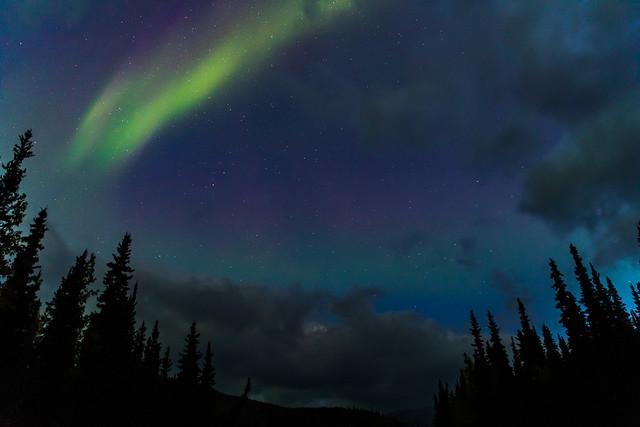 Aurora Borealis over Denali National Park