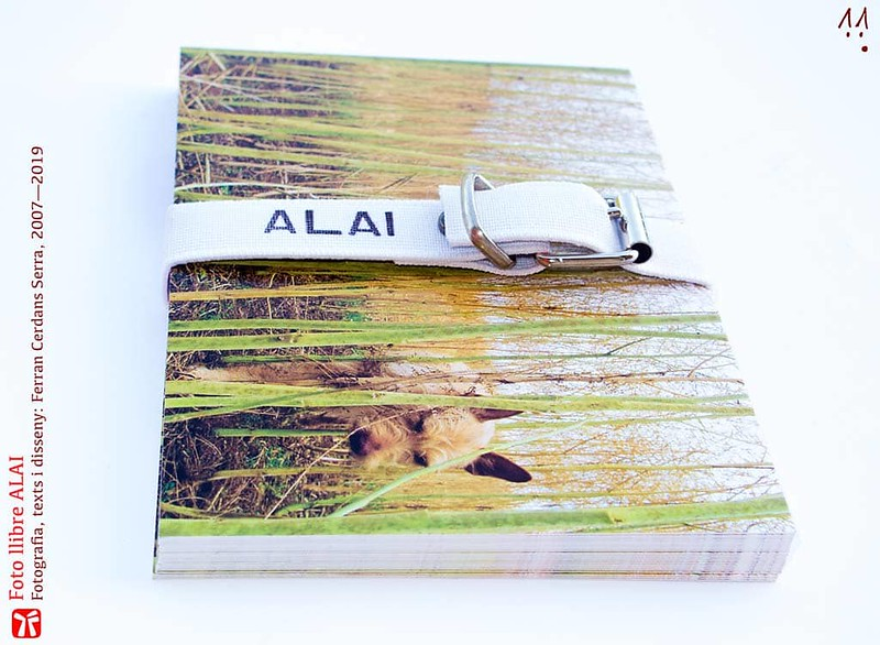 Foto llibre ALAI. Vista lateral del conjunt de postals.