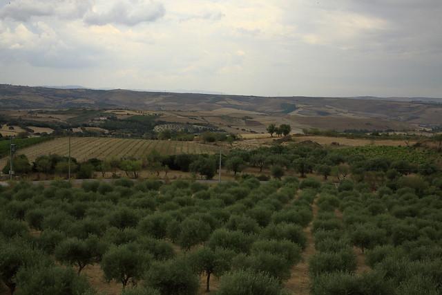 Semplicemente Sardegna