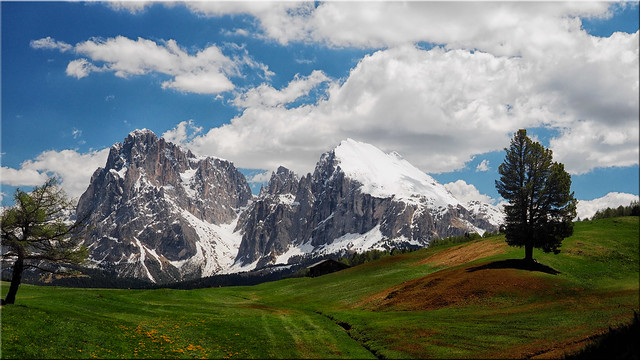 View from the Seiser Alm in South Tyrol on the Langkofel and the Plattkofel