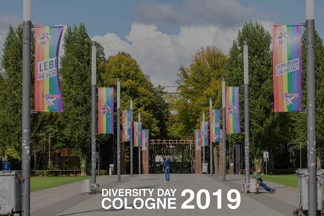 Straße vor dem Fußballstadion in Köln gesäumt mit Regenbogenflaggen, für Solidarität mit der LGBTQ-Community & dem Text