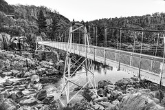 Alexandra Suspension Bridge