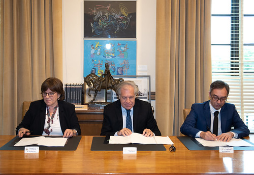 The OAS and the International Cooperative Alliance to Collaborate in Favor of Member States