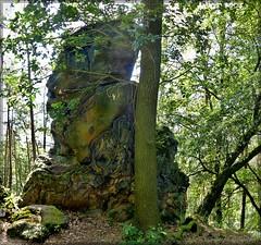 """Naturdenkmal """"Steinberg bei Schönau"""""""