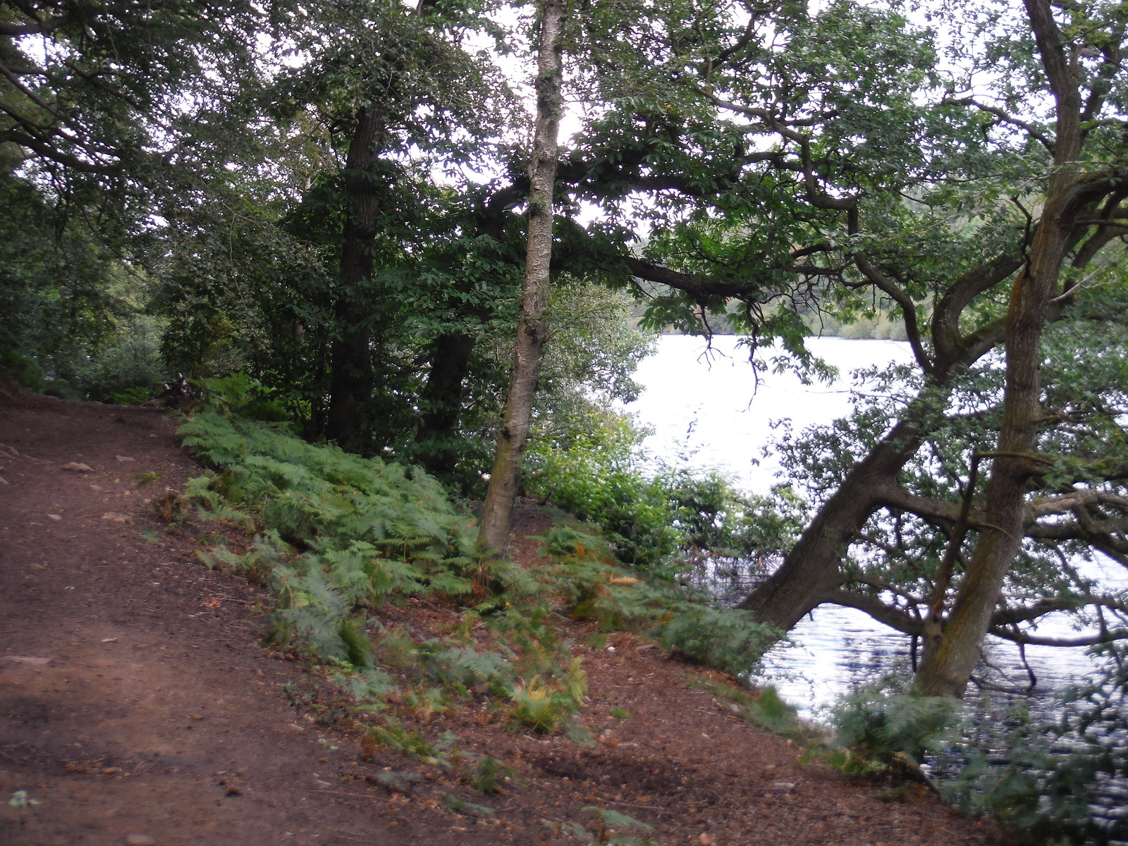 Path along Dale Dike (Reservoir) SWC Walk 348 - Ladybower Inn Circular (via Derwent Edges and Strines)