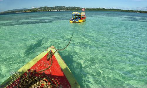 Nylon Pool - Tobago