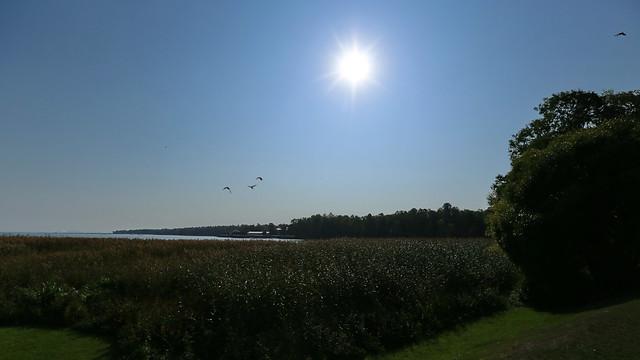 Sunshine in Early Autumn