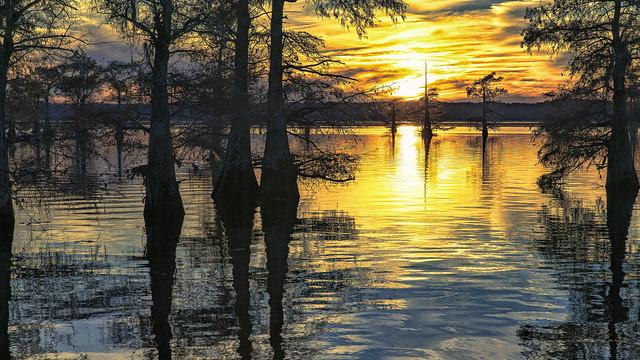 Caddo Lake Sunset