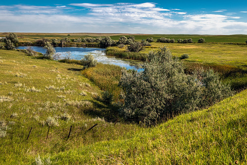 horizon d850 landscape greatplains water brush serious lake clouds pond trees colorful river sky farm montana bushes solemn quiet baker unitedstatesofamerica