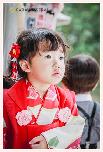 3歳の女の子の七五三 赤い着物