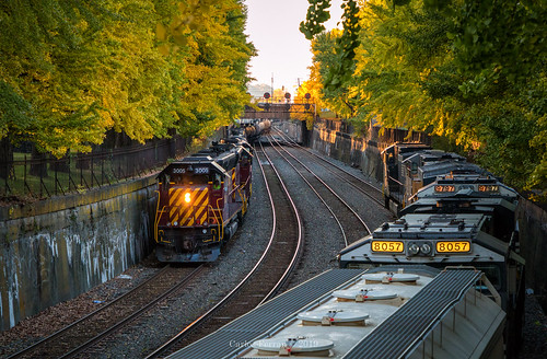 emd avr allegheny valley railroad ns norfolk southern train trains rail road rails trench burgh fall autumn commons park penn signal signals