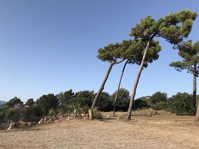 La plage d'argent - Corse
