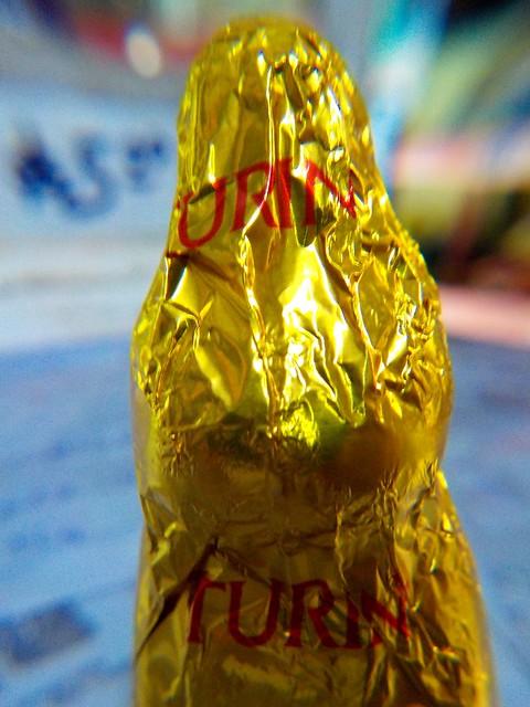 Conejo Turin 1