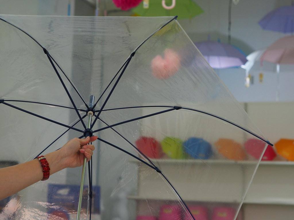台中大振豐洋傘 (15)