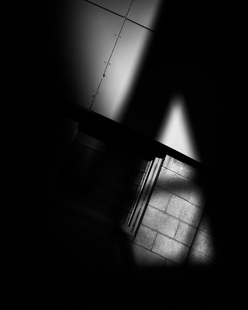 Creeping-Shadows-X_84A9463-1