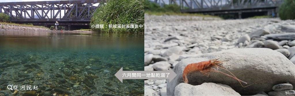3_同一處溪段竟有完全乾涸的狀態,洄游生物該如何是好呢?