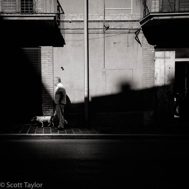 Walking the Dog II
