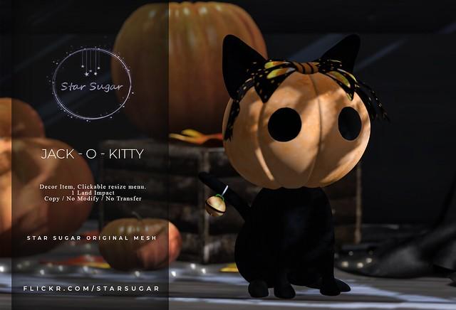Jack-O-Kitty