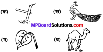 MP Board Class 6th Sanskrit Model Question Paper 3
