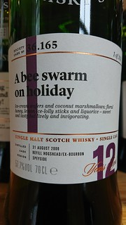 SMWS - 36.165 - A bee swarm on holiday
