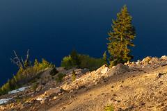 Crater Lake Rim Details