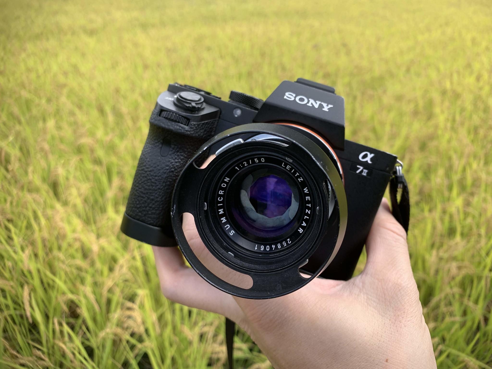 ひらゆの森 Summicron 50mm F2