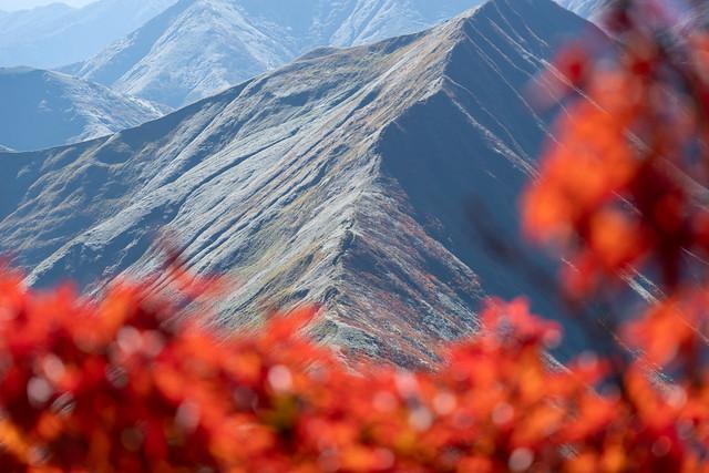 山稜の紅葉2019