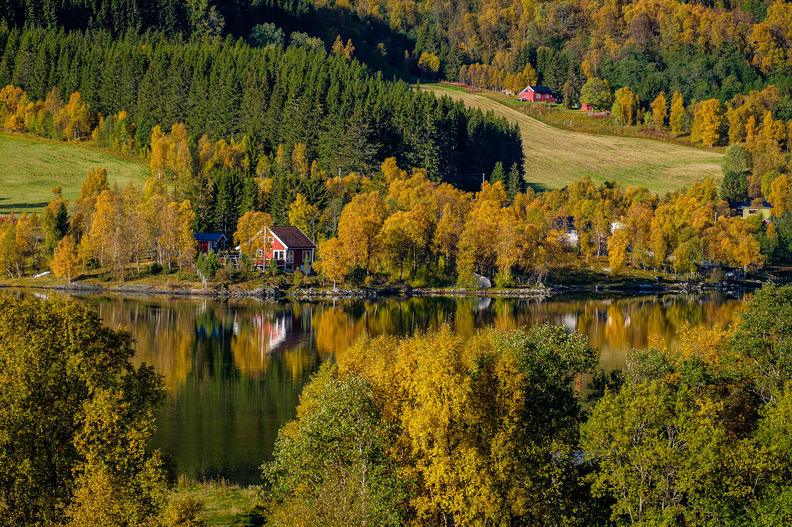 Autumn colours in Straumsbotn.