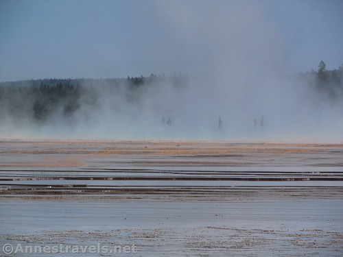 The Grand Prismatic Spring from the old road to Fairy Falls, Yellowstone National Park, Wyoming