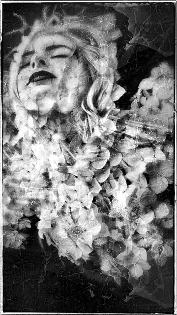 CÉLESTE & AEON VON ZARK / ALTERED STATE SERIE / 16/9 VERTICAL / THE WEIRD DREAM XXXIV.