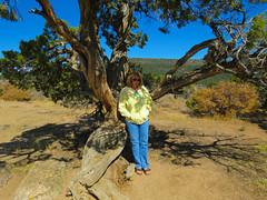 Dragon Point Trail #9