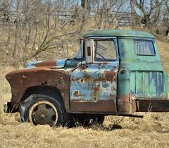 Abandoned Chevy farm truck hulk, Simcoe County, Ontario