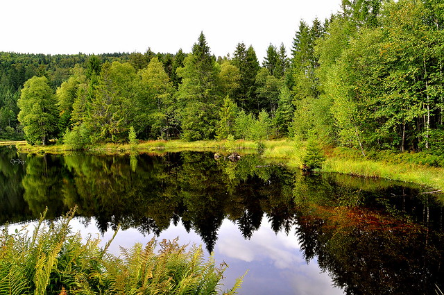 Lac de Lispach 1