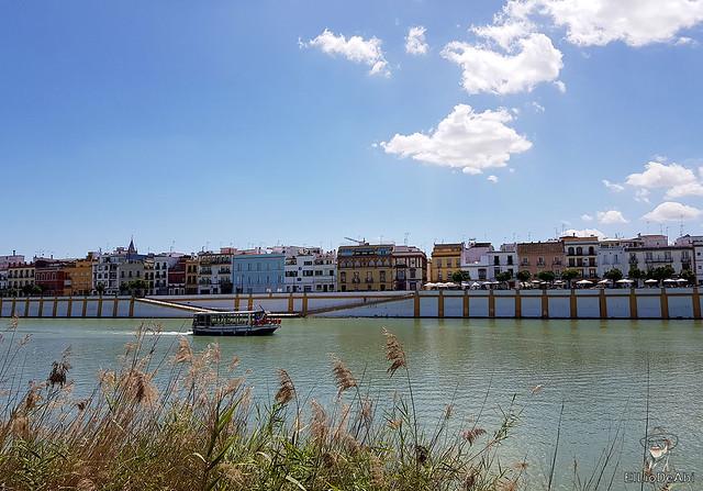 Que ver en Sevilla en unas horas  (30)
