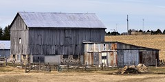 Abandoned barn and rusty shack, Simcoe County, Ontario.
