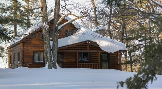 Winter Woodland Retreat