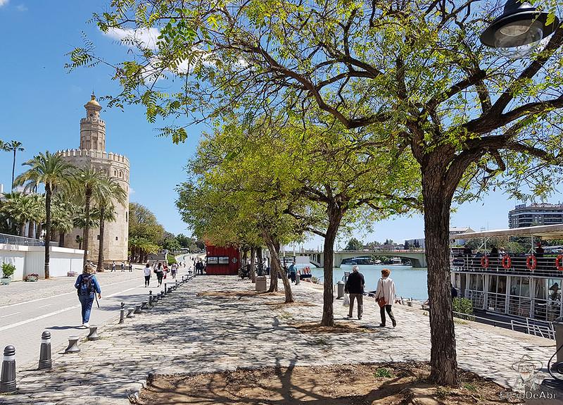 Que ver en Sevilla en unas horas  (32)
