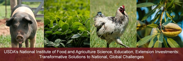 USDA's National Institute of Food and Agriculture Science, Education, Extension Investments: Transformative Solutions to National, Global Challenges graphic