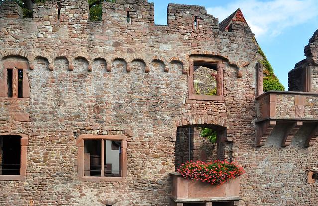 September 2019 ... Tiefburg Heidelberg-Handschuhsheim ... Foto: Brigitte Stolle